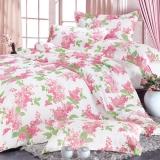 红富士生态家纺 安全健康床上用品 FN-16补充维生素美颜四件套 丁香花